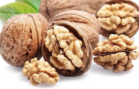 Грецкие орехи для подвижности сперматозоидов