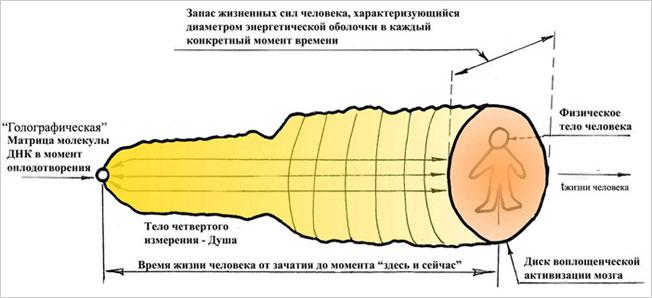 Энерго-информационное тело 4-го измерения, тело памяти человека, ментальное тело или по-другому - Душа. Тонко материальный объект ментального плана устойчивого существования материи, его структура и физика формирования.
