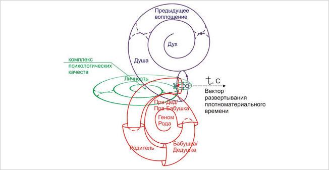 Человек - это ТРИ-единая структура, объединяющая на своём физическом теле Духовную, Личностную и Биологическую составляющие.